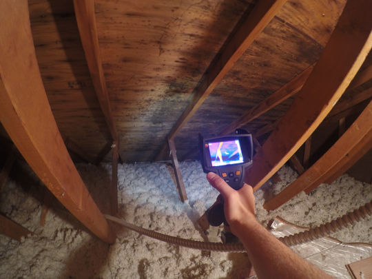 Infrared Mold Inspection And Testing Chicago Green Attic
